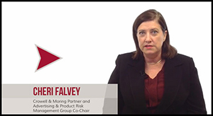 Cheri Falvey - Consumer Product Safety