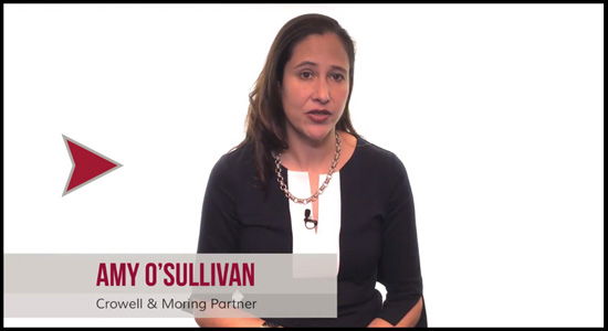 Amy O'Sullivan: Trends in Bid Protest Litigation - Government Contracts