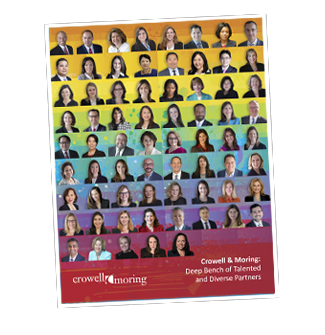 Diversity Annual Report